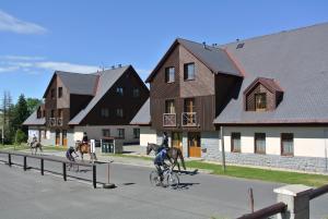 Apartmán-Hrabetice v Jizerských horách