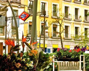 Hostal Tirso Plaza