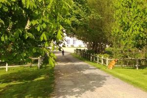 Demeure de Villiers, Bed and Breakfasts  Coudeville - big - 17