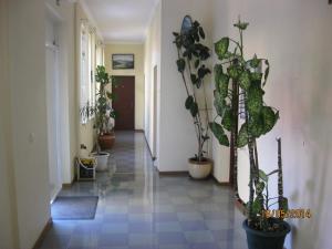 Отель Рица - фото 4