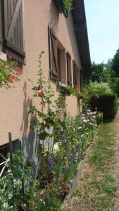 Gites Les Mérilles, Дома для отпуска  Le Ménil - big - 16