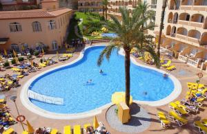 Bahía Tropical, Hotel  Almuñécar - big - 19
