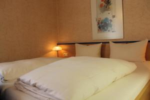 Hotel Chassalla, Hotely  Kassel - big - 7