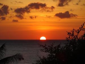obrázek - Sinar Bali 2