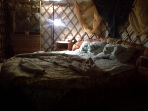 Almond Grove Yurt Hotel, Luxury tents  Ábrahámhegy - big - 2