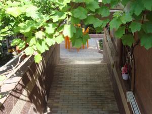 Divnomorye Guest House, Affittacamere  Divnomorskoye - big - 54