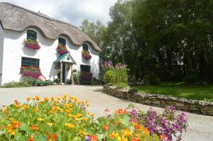 obrázek - Lissyclearig Thatched Cottage