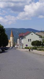 Villa Svalyavа