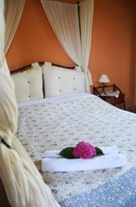 Guesthouse Kalosorisma, Affittacamere  Tsagarada - big - 12