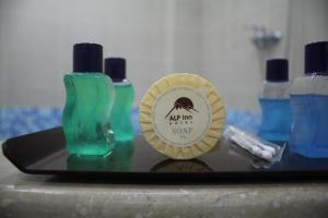 Отель Alp Inn - фото 22