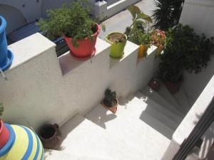 Studios Zafiri, Aparthotely  Naxos Chora - big - 23