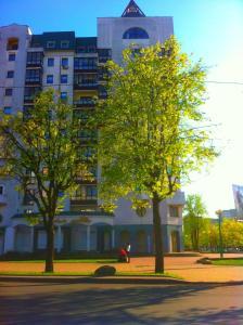 Апартаменты Некрасова - фото 2