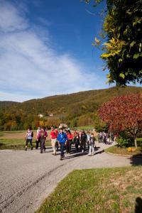 Holiday Home Pinterič - Čatež ob Savi
