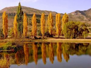 Lake Clarens Guest House, Penzióny  Clarens - big - 18