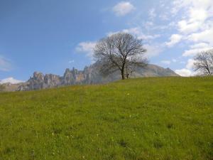Oasi dei Girasoli, Ferienwohnungen  Abbadia Lariana - big - 74