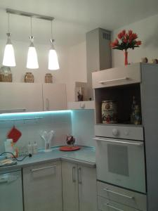 Apartment Festina Lente - фото 2