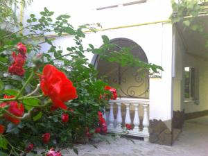 Гостевой дом Ялтинский дворик - фото 26
