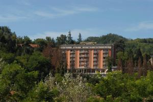 obrázek - Hotel Pineta