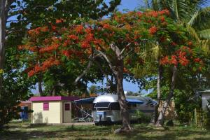 Airstream Paradise photos