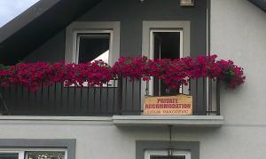Private accommodation Lidija Rakocevic