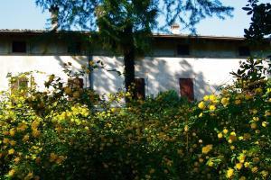 Agriturismo Solimago, Фермерские дома  Сольферино - big - 51