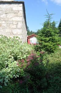 Domaine du Lac Ferrand