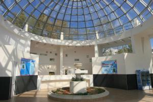 Отель Дельфин Адлеркурорт - фото 24