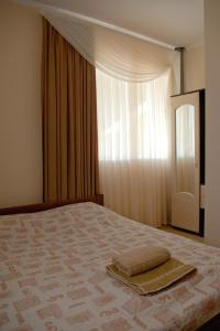 Отель Ягуар - фото 10