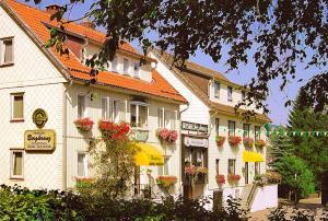obrázek - Hotel-Pension Bergkranz
