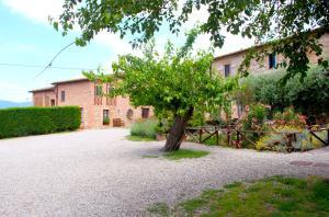 Casa Di Campagna In Toscana, Загородные дома  Совичилле - big - 143