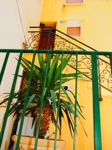 Casa Barranco, Prázdninové domy  Cefalù - big - 24