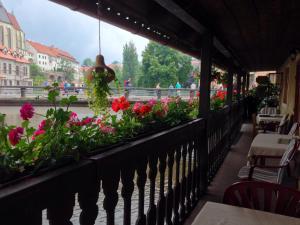 Pension Meandr, Guest houses  Český Krumlov - big - 12