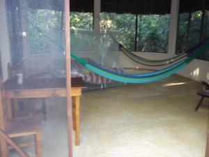 Treetop Palapa
