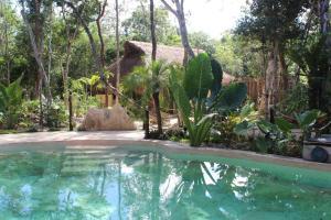 obrázek - Casa Selva Orquideas
