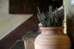 Urbino Resort, Загородные дома  Урбино - big - 68