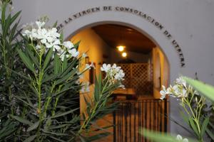Cortijo El Indiviso, Venkovské domy  Vejer de la Frontera - big - 18