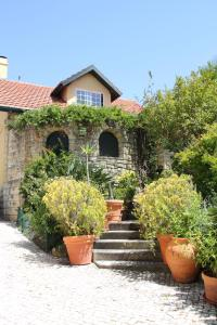 Estoril Cottage, Affittacamere  Cascais - big - 3