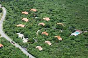 Flamingo Park Curacao