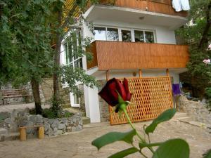 Voronin Guest House, Vendégházak  Gaszpra - big - 53