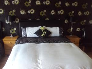 Shannonside Bed & Breakfast