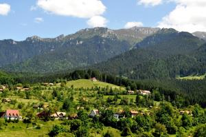 Transylvania Apartments, Aparthotels  Bran - big - 5