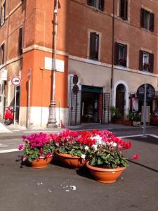 Monti Center of Rome