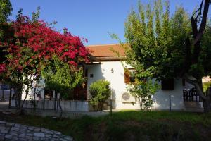 Alonia House 2
