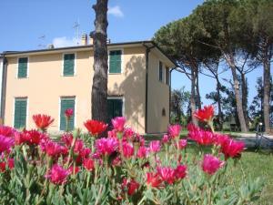 Appartamenti a Vignarca - Località Perelli