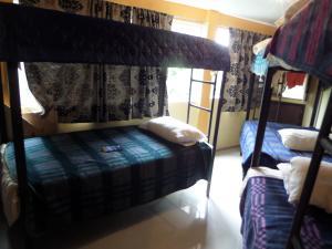 Hostel 399 Conejos y Yo