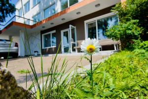 Hotel Dom Tvorchestva Baikal