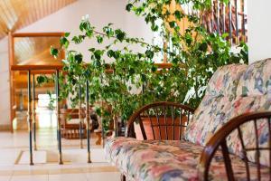 Отель Боровница - фото 15