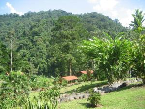 Pacuare River Lodge, Лоджи  Bajo Tigre - big - 28