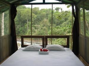 Pacuare River Lodge, Лоджи  Bajo Tigre - big - 1