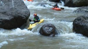 Pacuare River Lodge, Лоджи  Bajo Tigre - big - 26